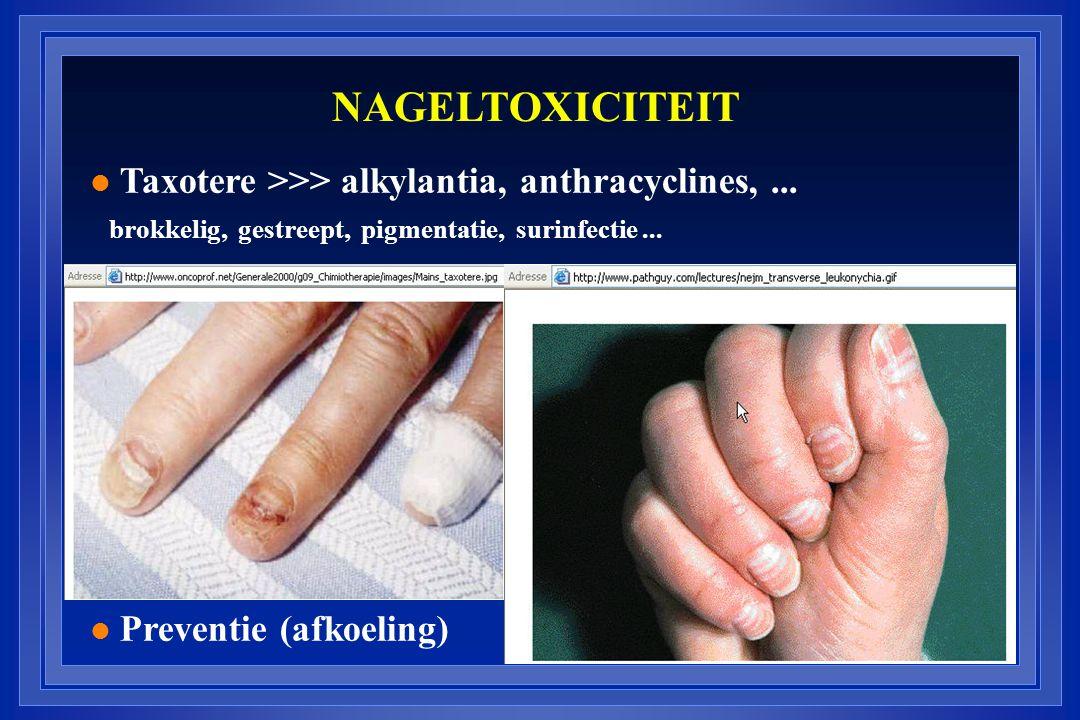 NAGELTOXICITEIT l Taxotere >>> alkylantia, anthracyclines,... brokkelig, gestreept, pigmentatie, surinfectie... l Preventie (afkoeling)