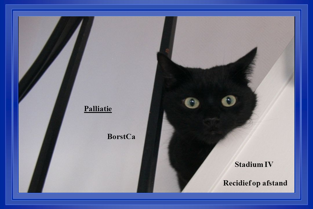 Palliatie BorstCa Stadium IV Recidief op afstand