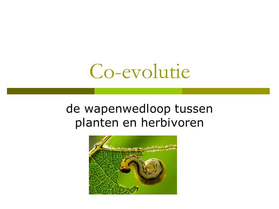 Co-evolutie de wapenwedloop tussen planten en herbivoren