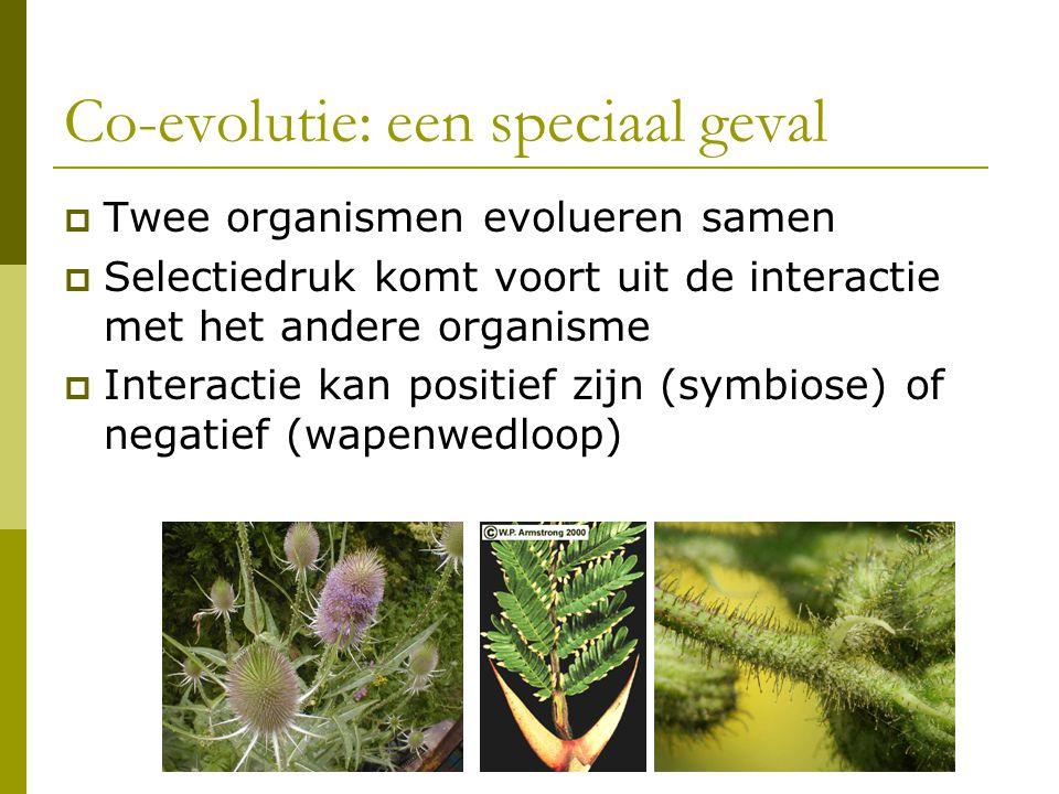 Co-evolutie: een speciaal geval  Twee organismen evolueren samen  Selectiedruk komt voort uit de interactie met het andere organisme  Interactie kan positief zijn (symbiose) of negatief (wapenwedloop)