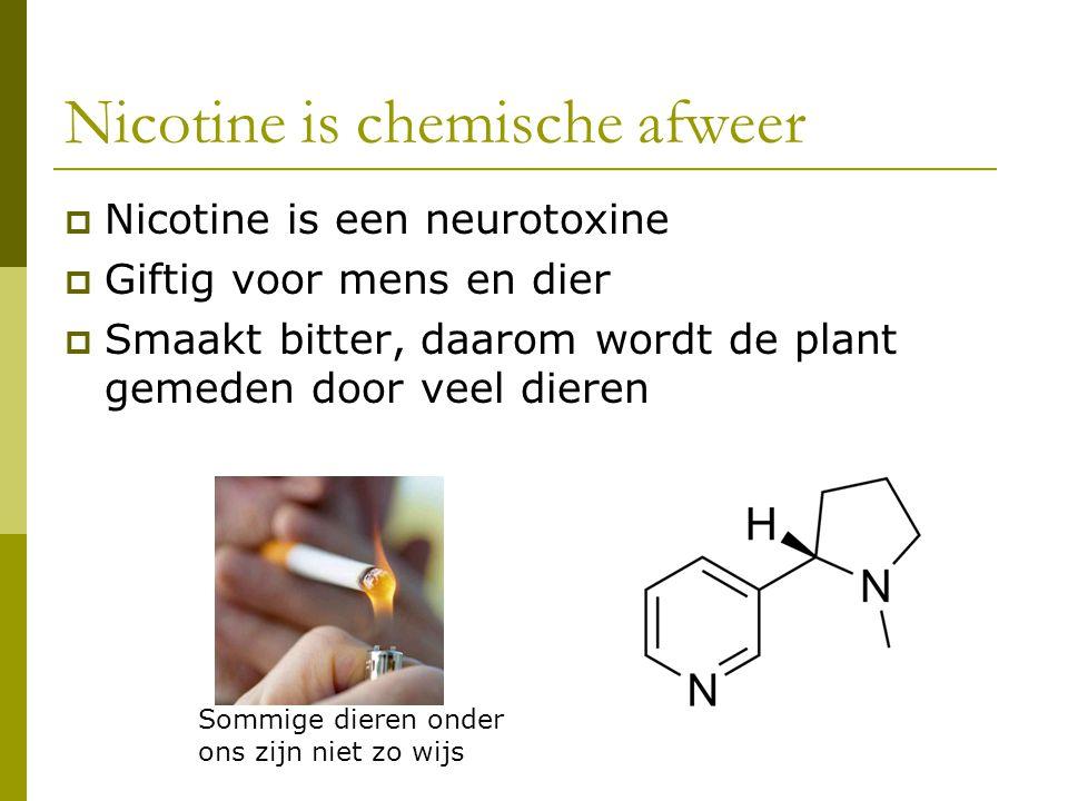 Nicotine is chemische afweer  Nicotine is een neurotoxine  Giftig voor mens en dier  Smaakt bitter, daarom wordt de plant gemeden door veel dieren Sommige dieren onder ons zijn niet zo wijs