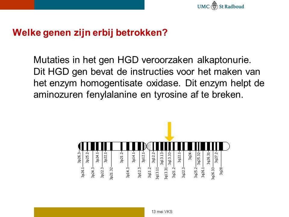 Welke genen zijn erbij betrokken? Mutaties in het gen HGD veroorzaken alkaptonurie. Dit HGD gen bevat de instructies voor het maken van het enzym homo