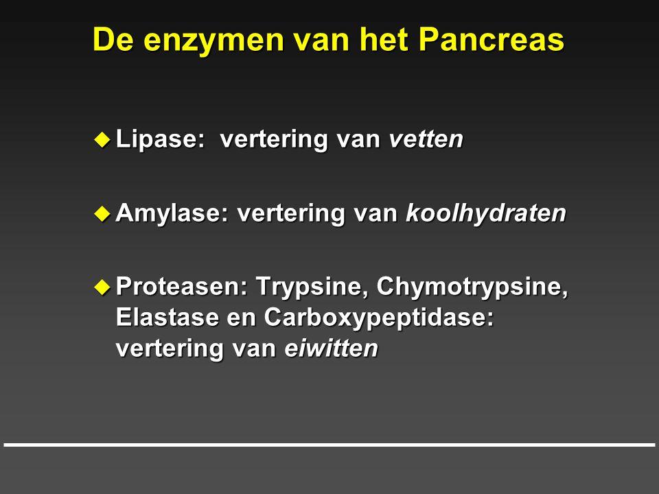 De enzymen van het Pancreas  Lipase: vertering van vetten  Amylase: vertering van koolhydraten  Proteasen: Trypsine, Chymotrypsine, Elastase en Car
