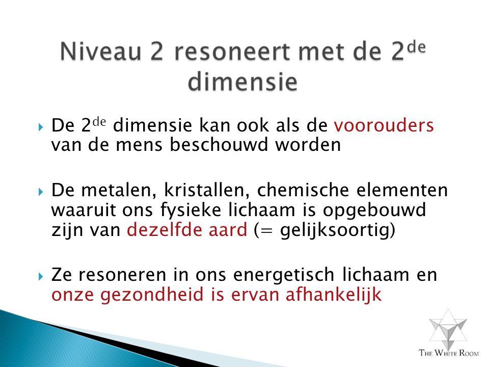  De 2 de dimensie kan ook als de voorouders van de mens beschouwd worden  De metalen, kristallen, chemische elementen waaruit ons fysieke lichaam is