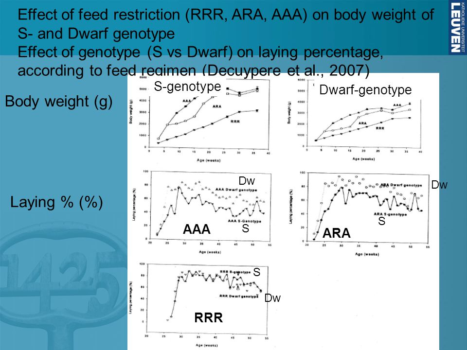 Effect of feed restriction (RRR, ARA, AAA) on body weight of S- and Dwarf genotype Effect of genotype (S vs Dwarf) on laying percentage, according to