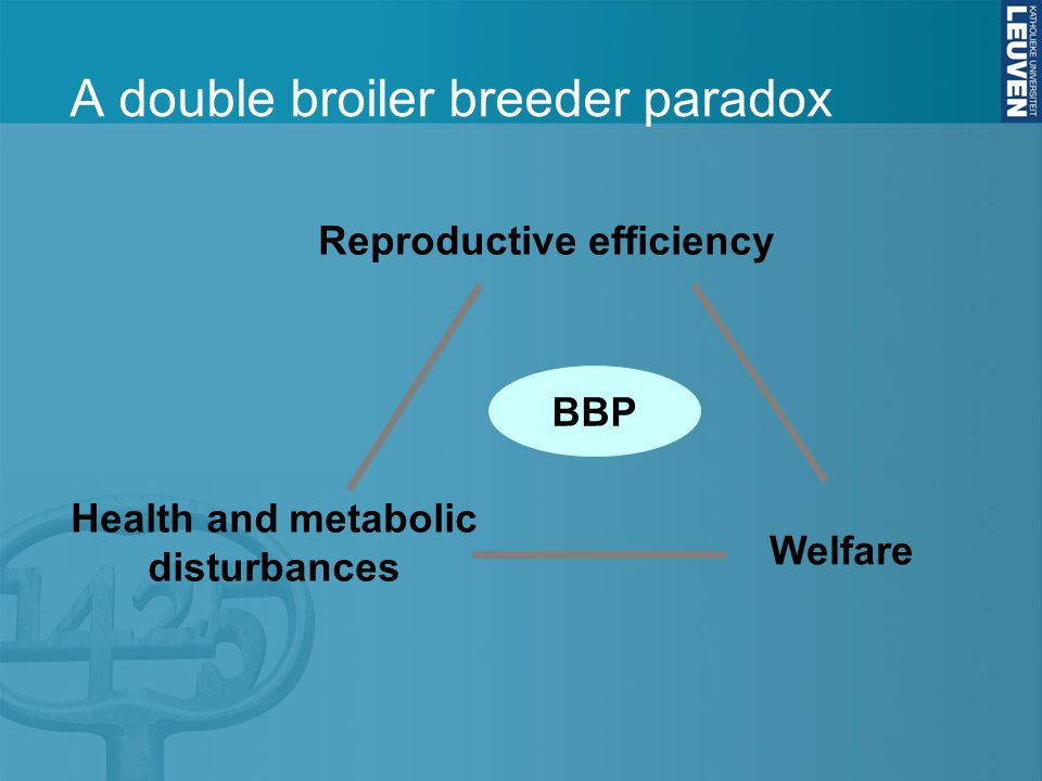 A double broiler breeder paradox Reproductive efficiency Health and metabolic disturbances Welfare BBP