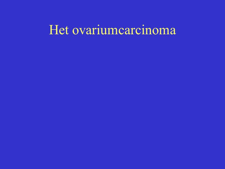 Het ovariumcarcinoma