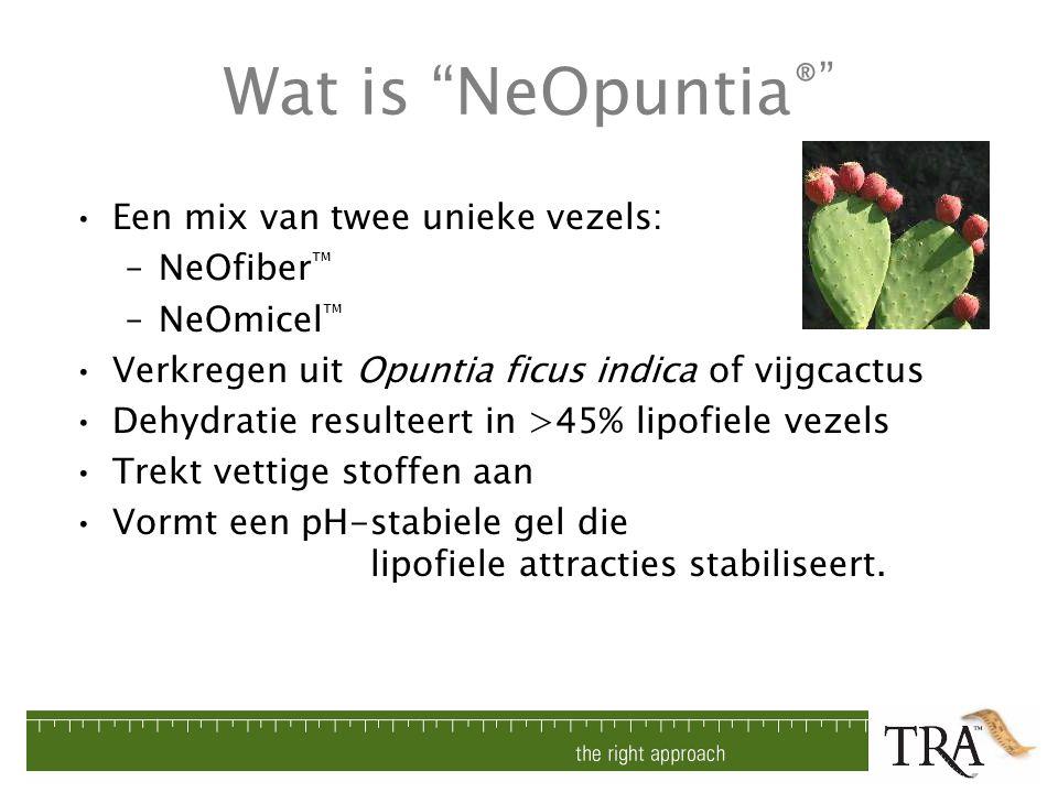 """Wat is """"NeOpuntia ®"""" Een mix van twee unieke vezels: –NeOfiber ™ –NeOmicel ™ Verkregen uit Opuntia ficus indica of vijgcactus Dehydratie resulteert in"""