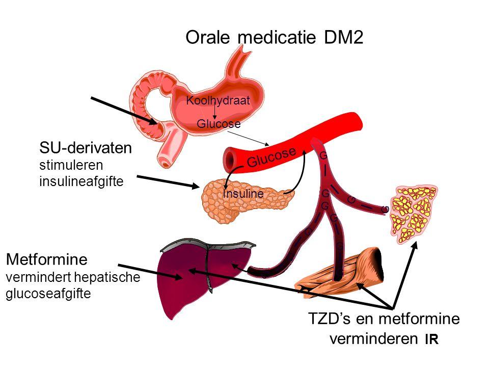 Orale medicatie DM2 Glucose Koolhydraat Glucose Insuline SU-derivaten stimuleren insulineafgifte Metformine vermindert hepatische glucoseafgifte TZD's