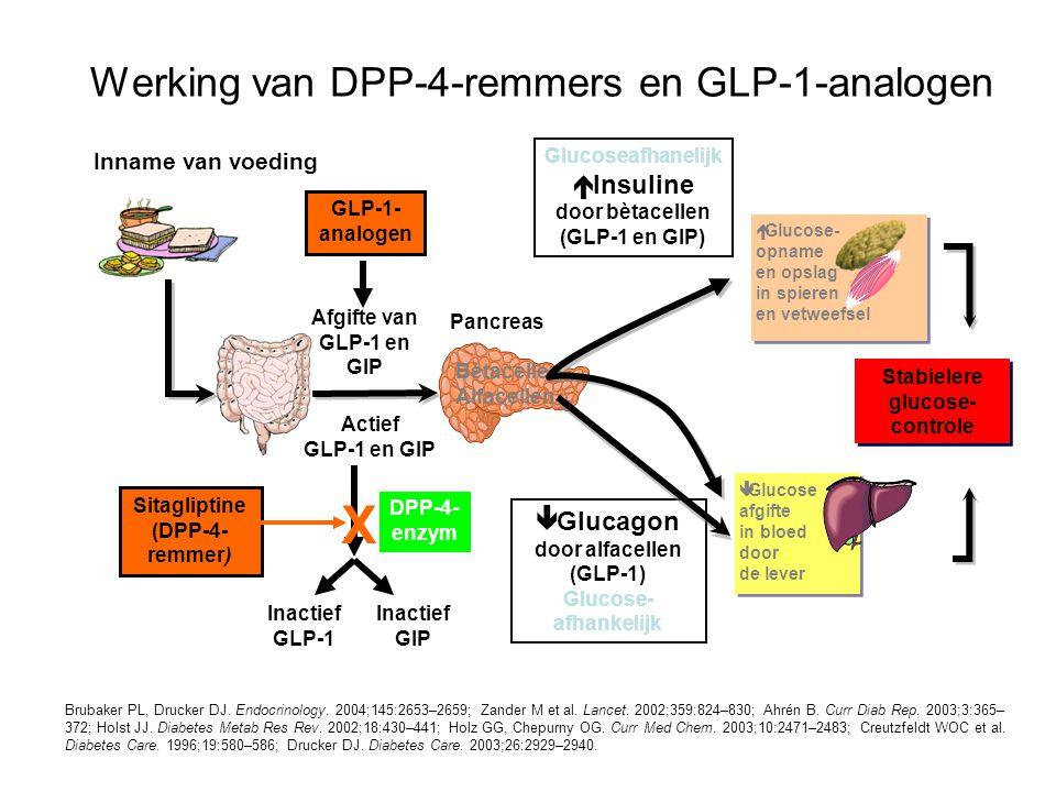 Werking van DPP-4-remmers en GLP-1-analogen Brubaker PL, Drucker DJ. Endocrinology. 2004;145:2653–2659; Zander M et al. Lancet. 2002;359:824–830; Ahré