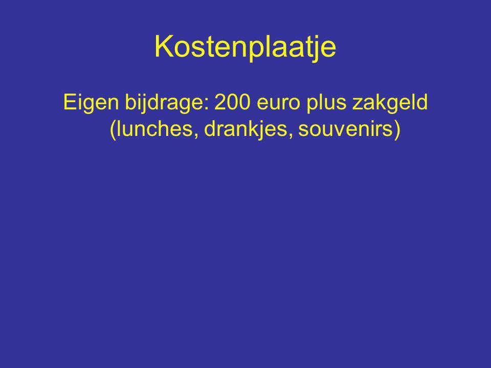 Kostenplaatje Eigen bijdrage: 200 euro plus zakgeld (lunches, drankjes, souvenirs)