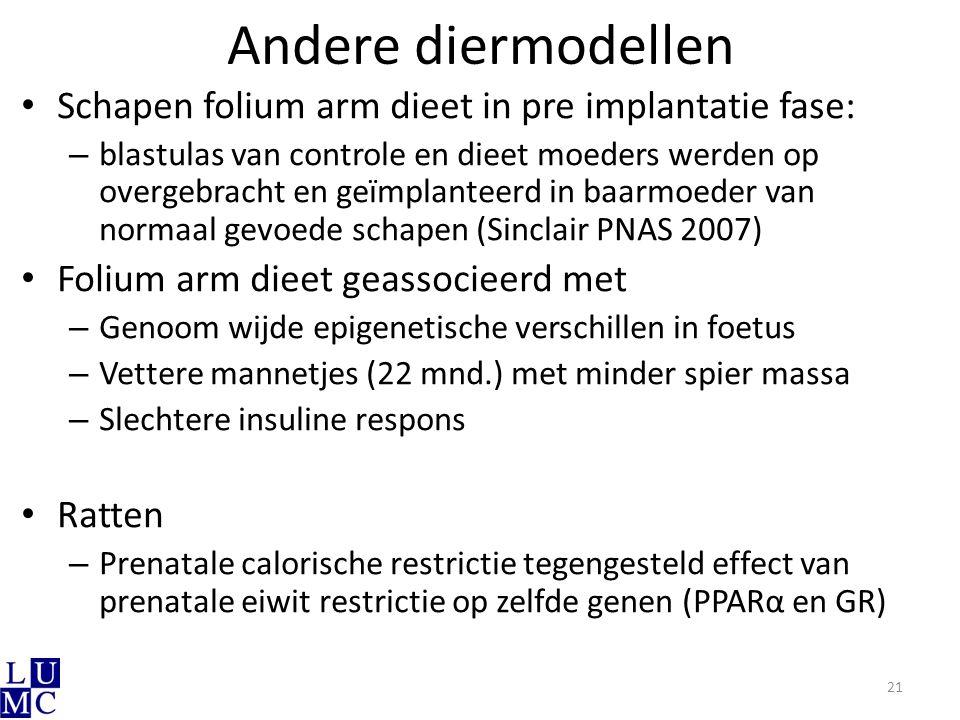 Andere diermodellen Schapen folium arm dieet in pre implantatie fase: – blastulas van controle en dieet moeders werden op overgebracht en geïmplanteer
