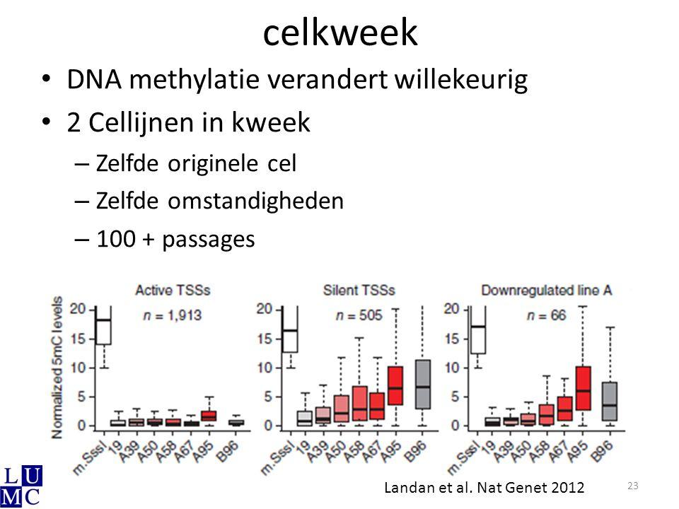celkweek DNA methylatie verandert willekeurig 2 Cellijnen in kweek – Zelfde originele cel – Zelfde omstandigheden – 100 + passages 23 Landan et al. Na