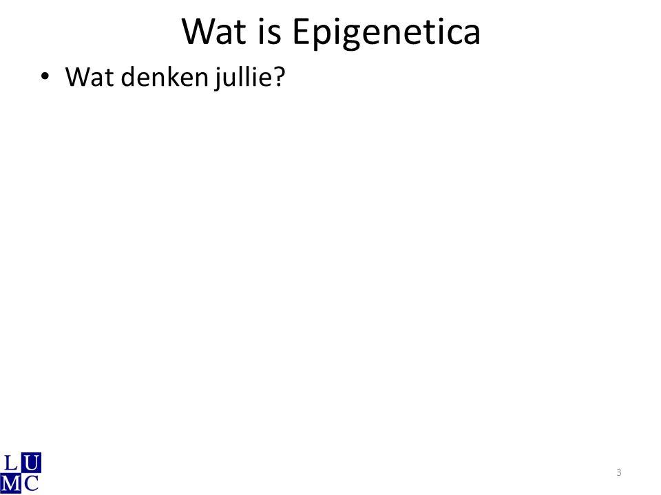 Wat is Epigenetica Wat denken jullie? 3