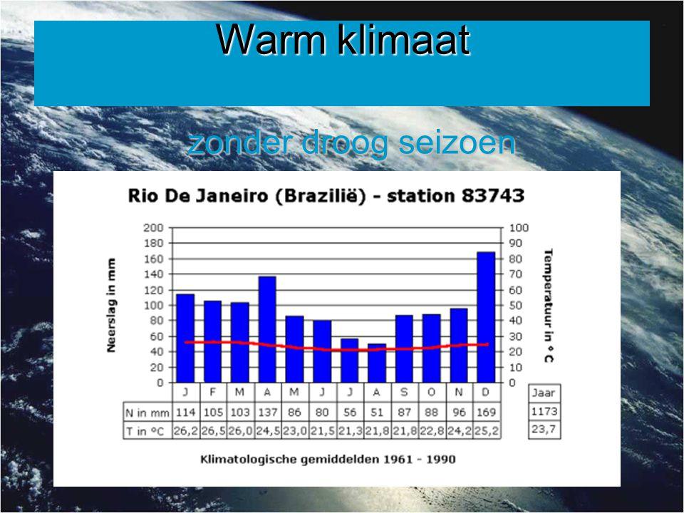 Warm klimaat zonder droog seizoen