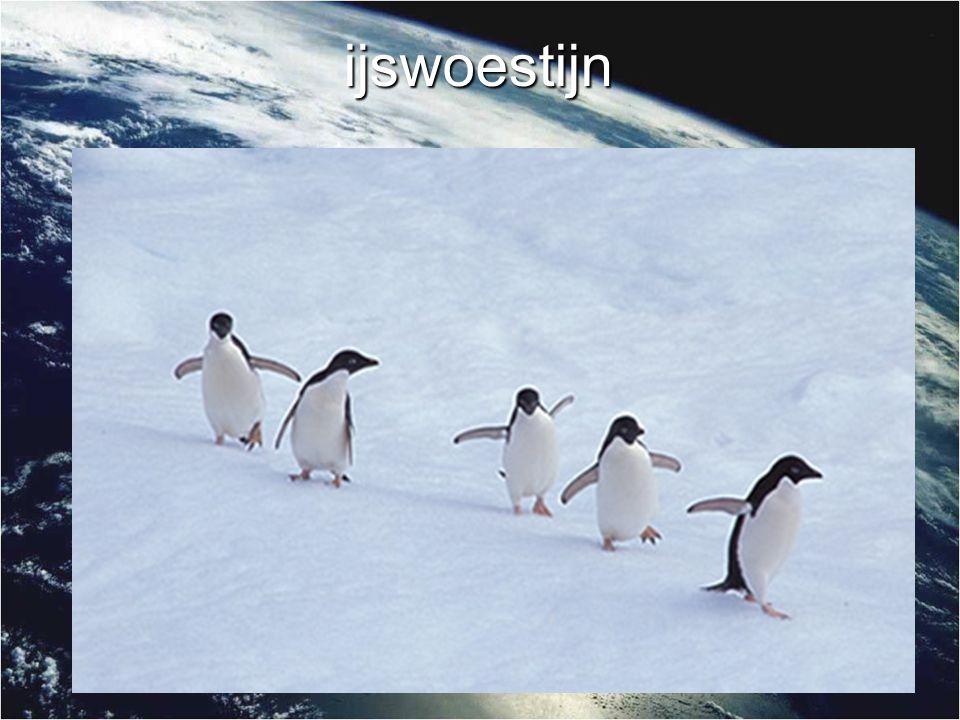 ijswoestijn