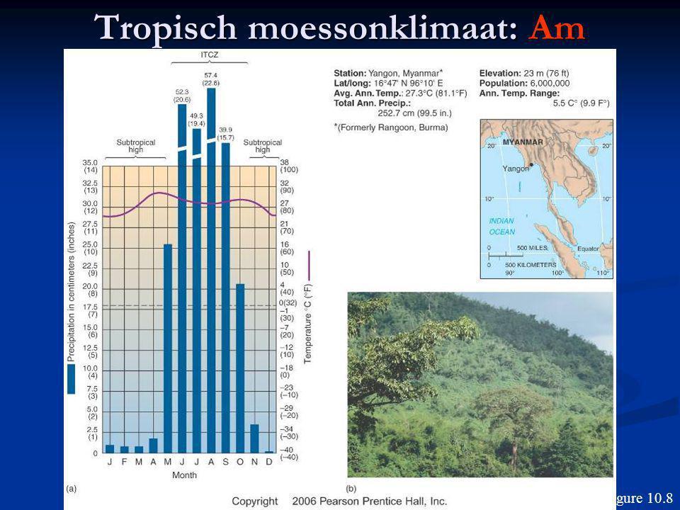 Tropisch moessonklimaat: Am Figure 10.8