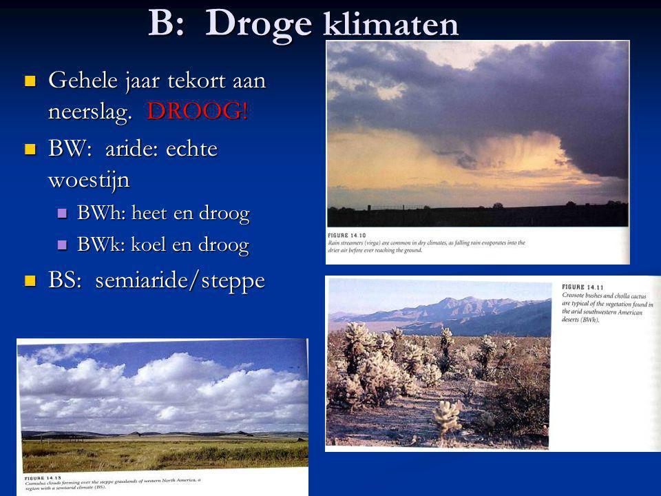 B: Droge klimaten Gehele jaar tekort aan neerslag. DROOG! Gehele jaar tekort aan neerslag. DROOG! BW: aride: echte woestijn BW: aride: echte woestijn