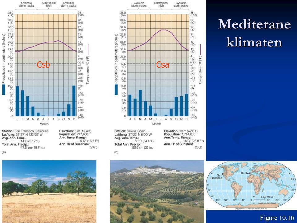 Mediterane klimaten Figure 10.16 CsaCsb