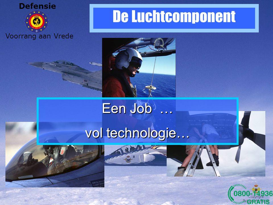 Defensie Voorrang aan Vrede De Landcomponent Een Job bij Defensie?.