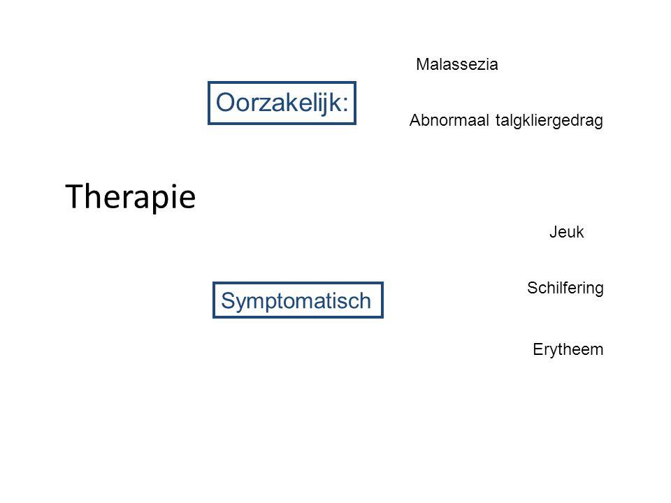 Therapie Oorzakelijk: Malassezia Abnormaal talgkliergedrag Symptomatisch Jeuk Schilfering Erytheem