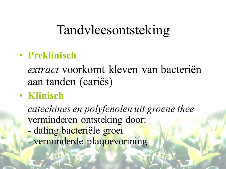 Tandvleesontsteking Preklinisch extract voorkomt kleven van bacteriën aan tanden (cariës) Klinisch catechines en polyfenolen uit groene thee verminder