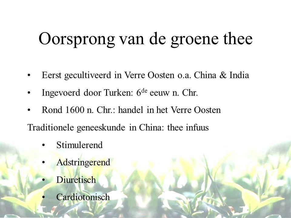 Oorsprong van de groene thee Eerst gecultiveerd in Verre Oosten o.a. China & India Ingevoerd door Turken: 6 de eeuw n. Chr. Rond 1600 n. Chr.: handel