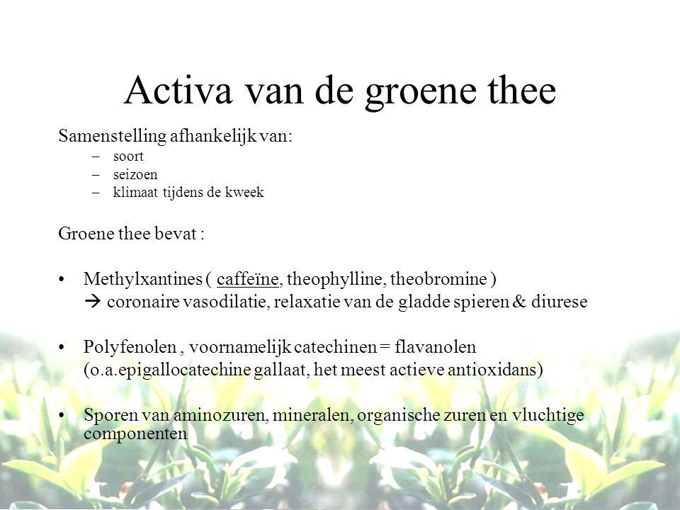 Activa van de groene thee Samenstelling afhankelijk van: –soort –seizoen –klimaat tijdens de kweek Groene thee bevat : Methylxantines ( caffeïne, theo