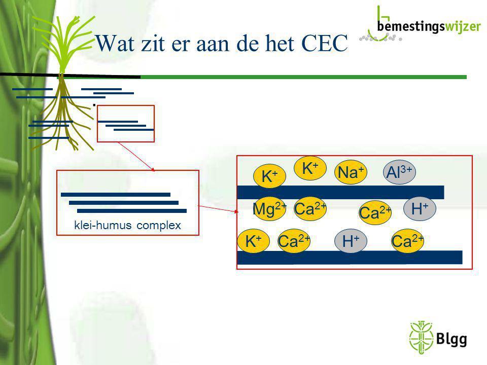 Wat zit er aan de het CEC. klei-humus complex K+K+ K+K+ Ca 2+ Mg 2+ K+K+ H+H+ Ca 2+ Na + Al 3+ Ca 2+ H+H+