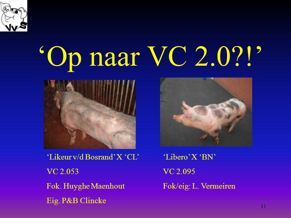 11 'Op naar VC 2.0?!' 'Likeur v/d Bosrand' X 'CL' VC 2.053 Fok.