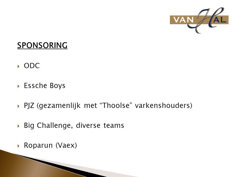 """SPONSORING  ODC  Essche Boys  PJZ (gezamenlijk met """"Thoolse"""" varkenshouders)  Big Challenge, diverse teams  Roparun (Vaex)"""
