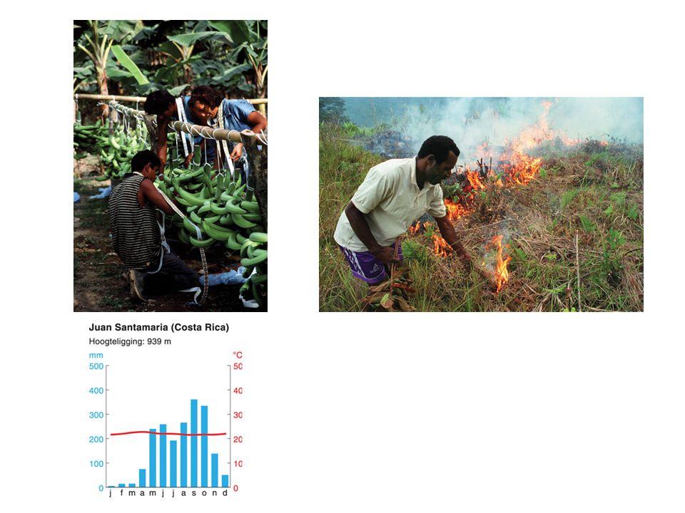 Tropische landschapszone Hele jaar > 18 graden Celsius Neerslag: hele jaar door of moesson Tropisch regenwoudklimaat en savanneklimaat Natuurlijke vegetatie: tropisch regenwoud, mangrovebos, savanne Zelfvoorzienende landbouw Reliëf: terrasbouw Commerciële landbouw op plantages