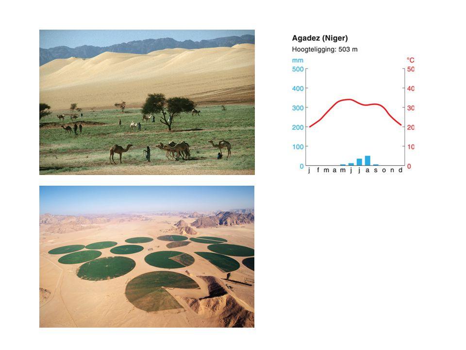 Aride (droge) landschapszone Temperatuur varieert: dag en breedteligging Steppeklimaat (> 250 mm per jaar) woestijnklimaat (< 250 mm per jaar) Steppeklimaat: semi-aride Het is er droog: - invloed hogedrukgebied op 30 graden NB/ZB - lijzijde van een gebergte (bijv.