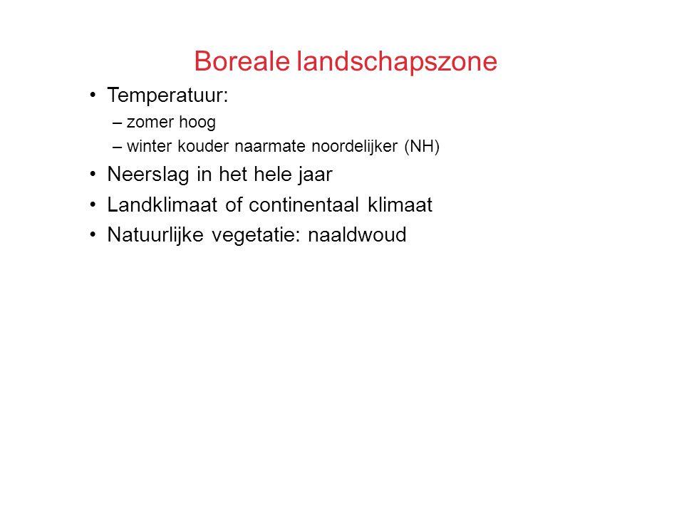 Boreale landschapszone Temperatuur: –zomer hoog –winter kouder naarmate noordelijker (NH) Neerslag in het hele jaar Landklimaat of continentaal klimaa