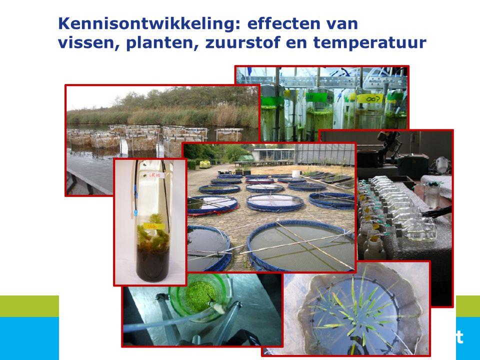 Kennisontwikkeling: effecten van vissen, planten, zuurstof en temperatuur