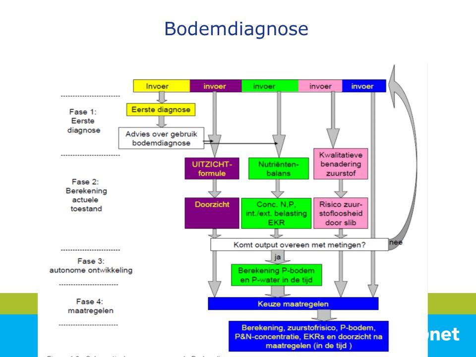 Bodemdiagnose