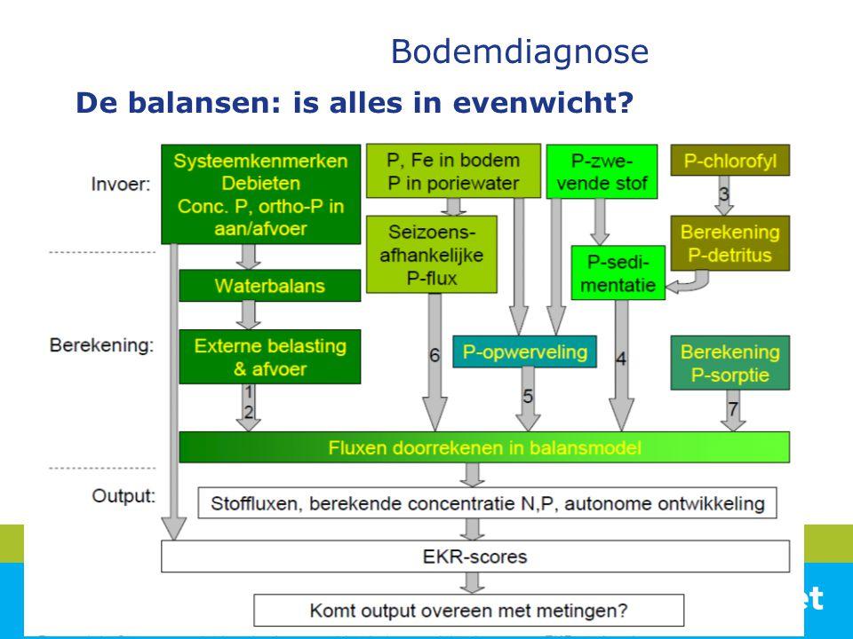 Bodemdiagnose De balansen: is alles in evenwicht?