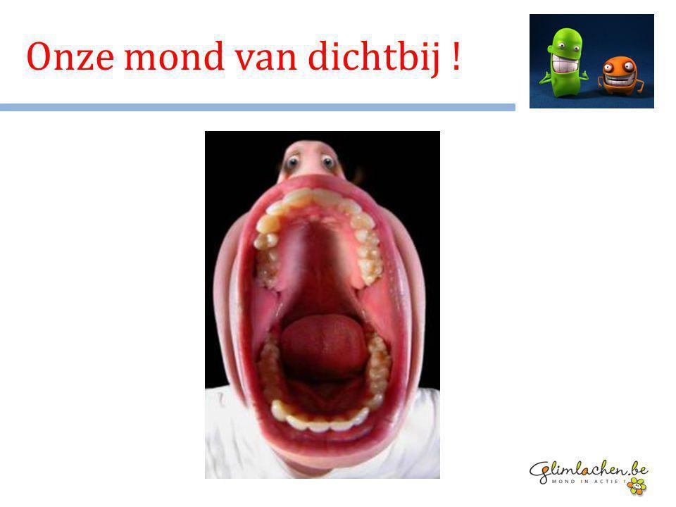 Tong Tanden Speeksel Tandvlees … Onze mond van dichtbij !