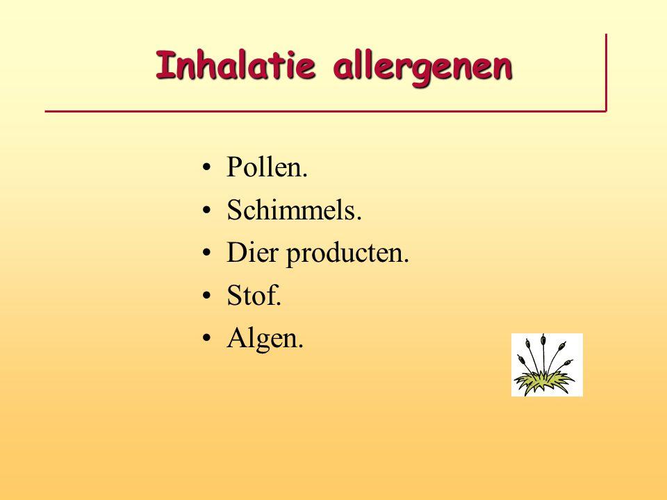 Inhalatie allergenen Pollen. Schimmels. Dier producten. Stof. Algen.