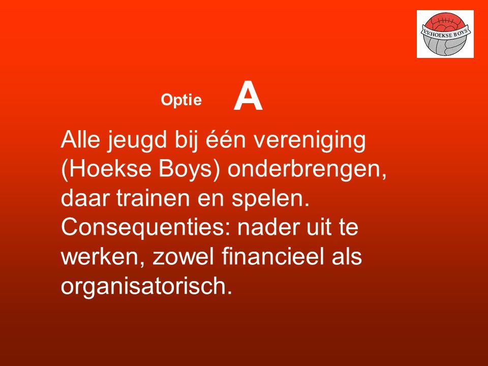Alle jeugd bij één vereniging (Hoekse Boys) onderbrengen, daar trainen en spelen.