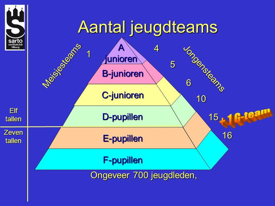 Aantal jeugdteams F-pupillen E-pupillen D-pupillen C-junioren B-junioren A junioren 4 1 Jongensteams Meisjesteams 5 6 10 15 16 Elf tallen Zeven tallen