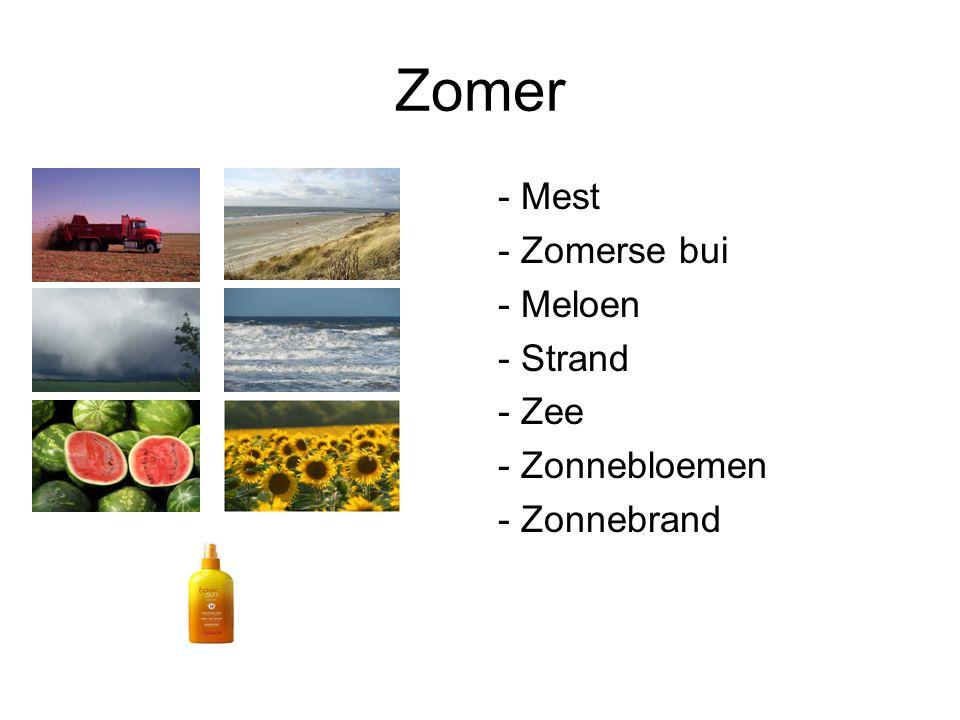 Zomer - Mest - Zomerse bui - Meloen - Strand - Zee - Zonnebloemen - Zonnebrand