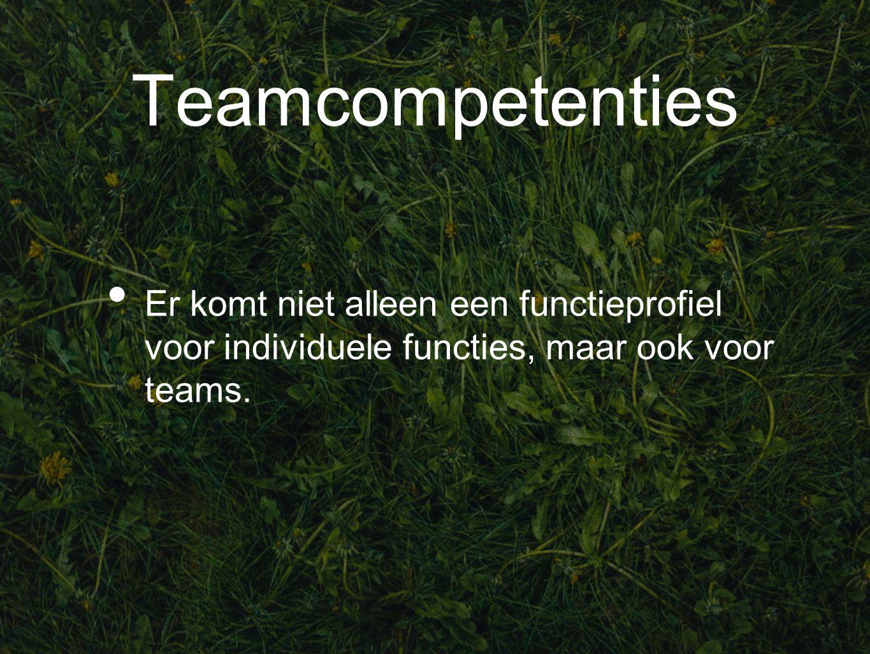 Teamcompetenties Er komt niet alleen een functieprofiel voor individuele functies, maar ook voor teams.