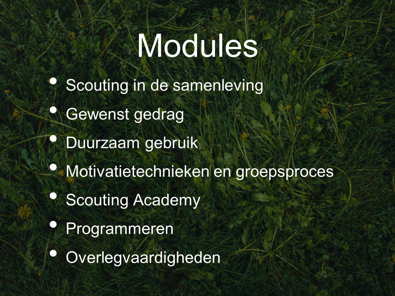 Modules Scouting in de samenleving Gewenst gedrag Duurzaam gebruik Motivatietechnieken en groepsproces Scouting Academy Programmeren Overlegvaardigheden