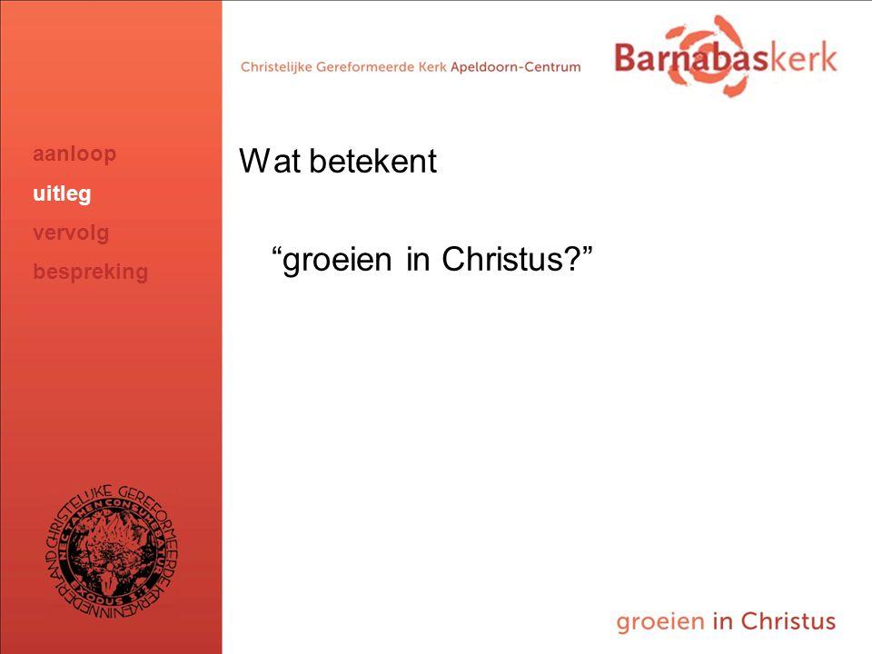 BarnabasKerk De Vanaf hier presentatie van de werkgroep; uitwerking nog te ontvangen van Jan ten Hove en uit te werken door Hans en Arjan Wat betekent