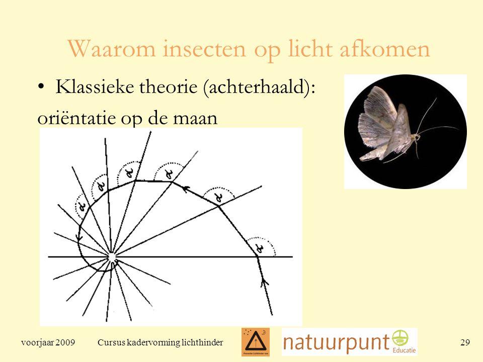 voorjaar 2009 Cursus kadervorming lichthinder 29 Waarom insecten op licht afkomen Klassieke theorie (achterhaald): oriëntatie op de maan
