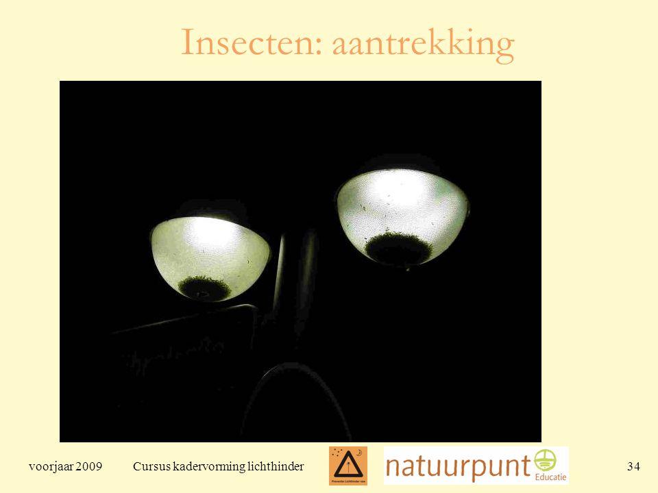 voorjaar 2009 Cursus kadervorming lichthinder 34 Insecten: aantrekking