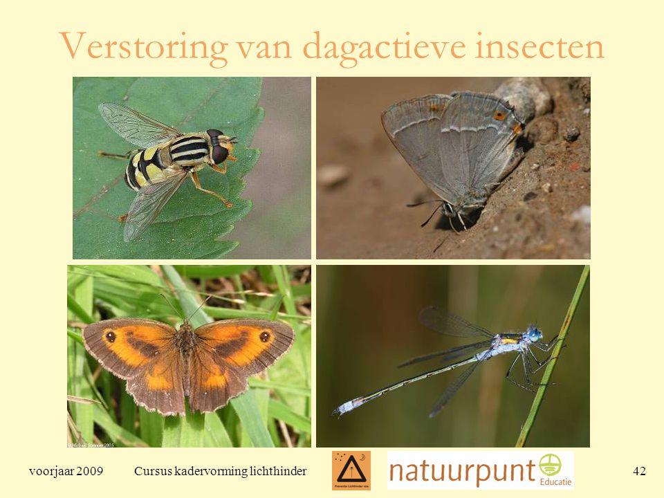 voorjaar 2009 Cursus kadervorming lichthinder 42 Verstoring van dagactieve insecten