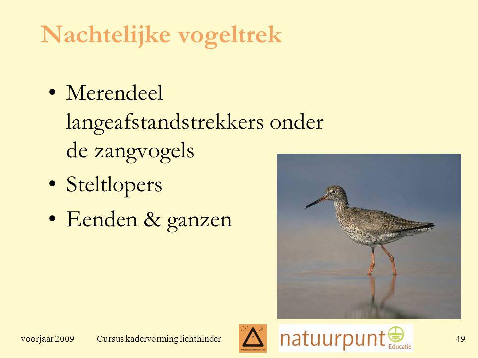 voorjaar 2009 Cursus kadervorming lichthinder 49 Nachtelijke vogeltrek Merendeel langeafstandstrekkers onder de zangvogels Steltlopers Eenden & ganzen