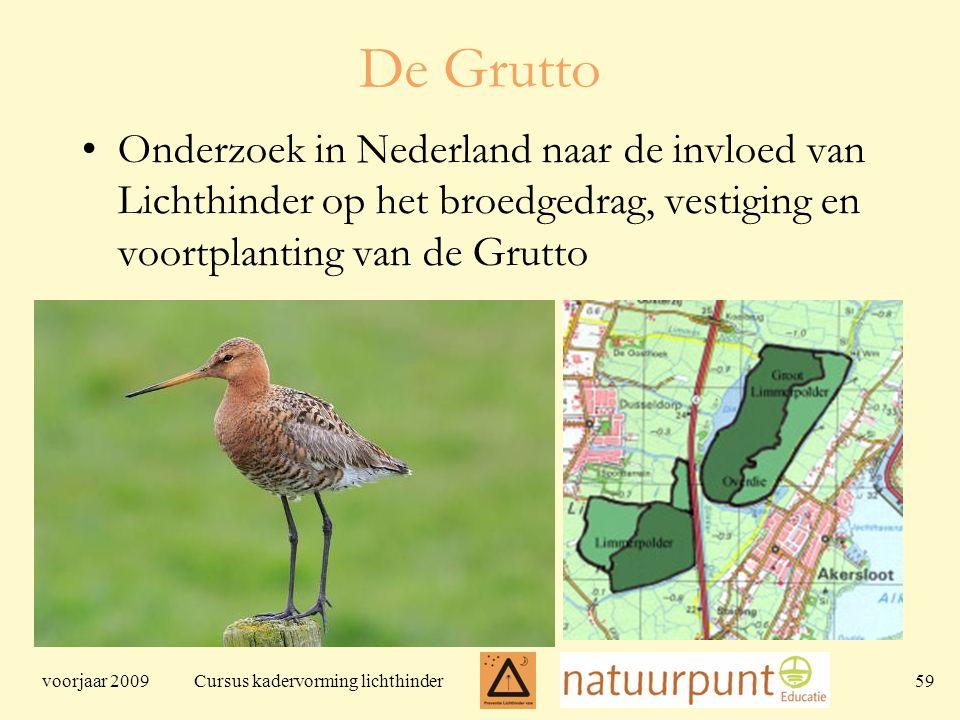 voorjaar 2009 Cursus kadervorming lichthinder 59 De Grutto Onderzoek in Nederland naar de invloed van Lichthinder op het broedgedrag, vestiging en voortplanting van de Grutto
